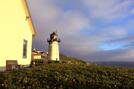 Point Montara Lighthouse. Photo by Orion Tippens