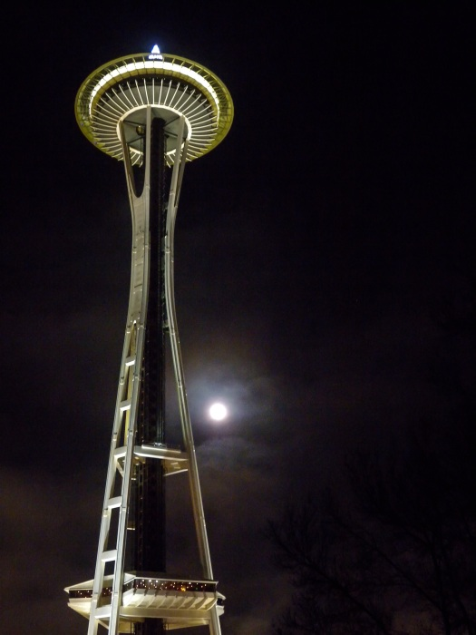 Space Needle moonlight
