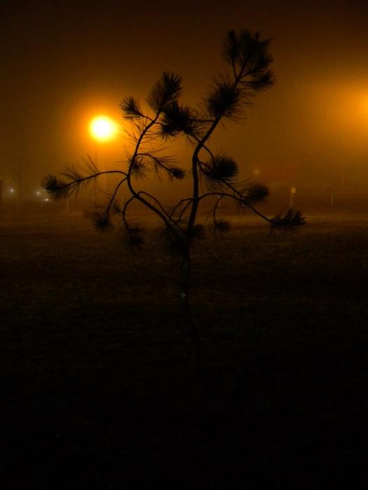 Photo Jan 07, 1 54 45 AM