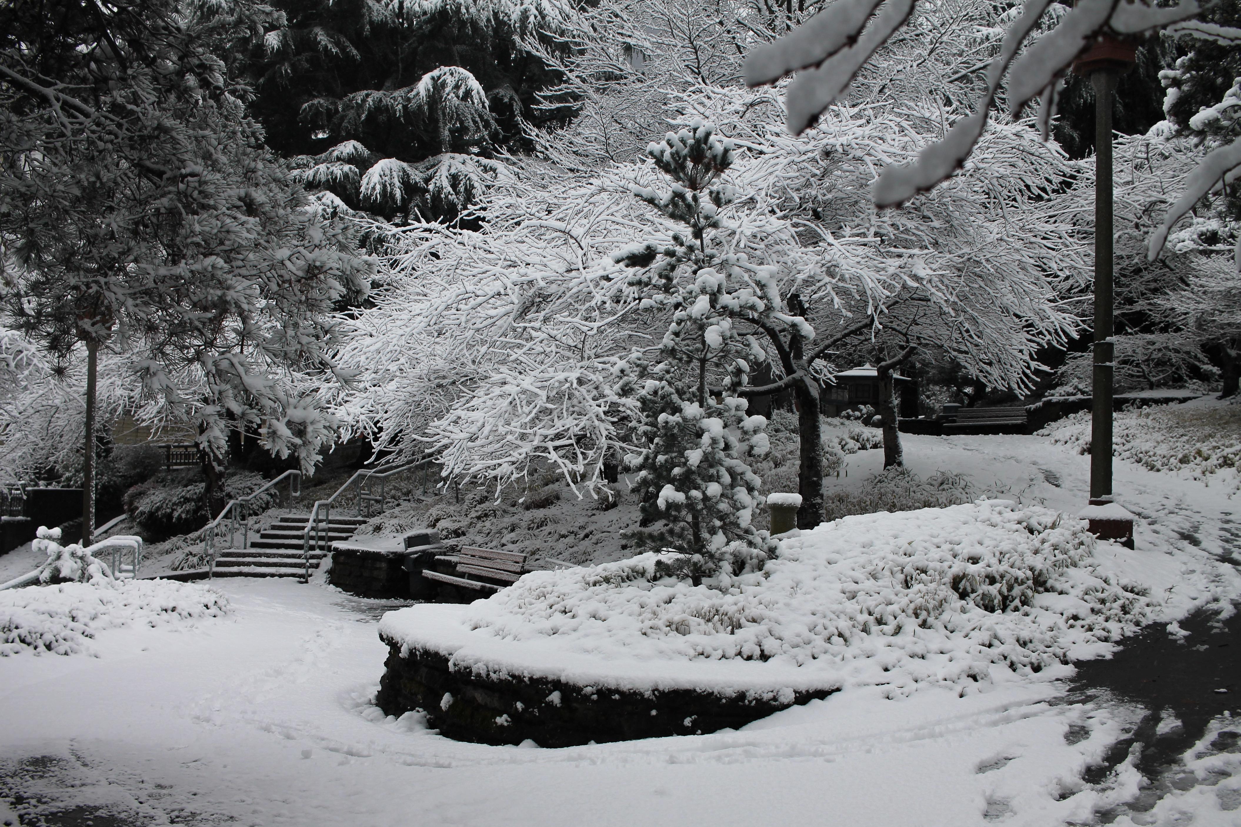 photo-feb-06-8-25-45-am