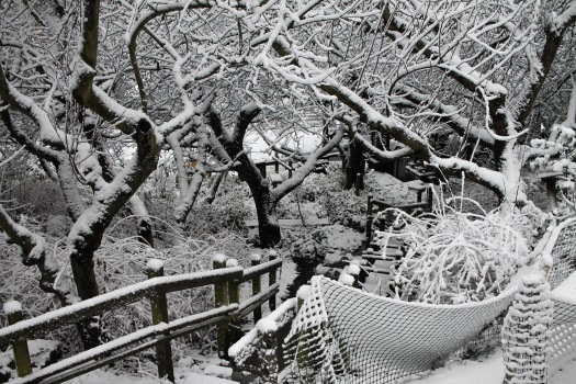 photo-feb-06-8-28-52-am